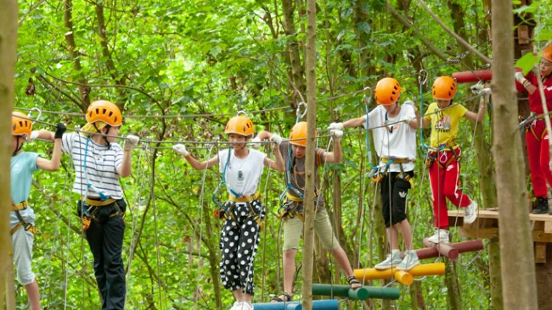 丛林穿越-高峰森林公园