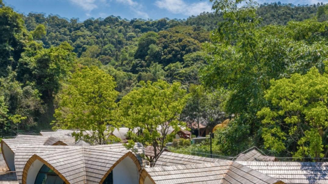 百鸟林餐厅-高峰森林公园