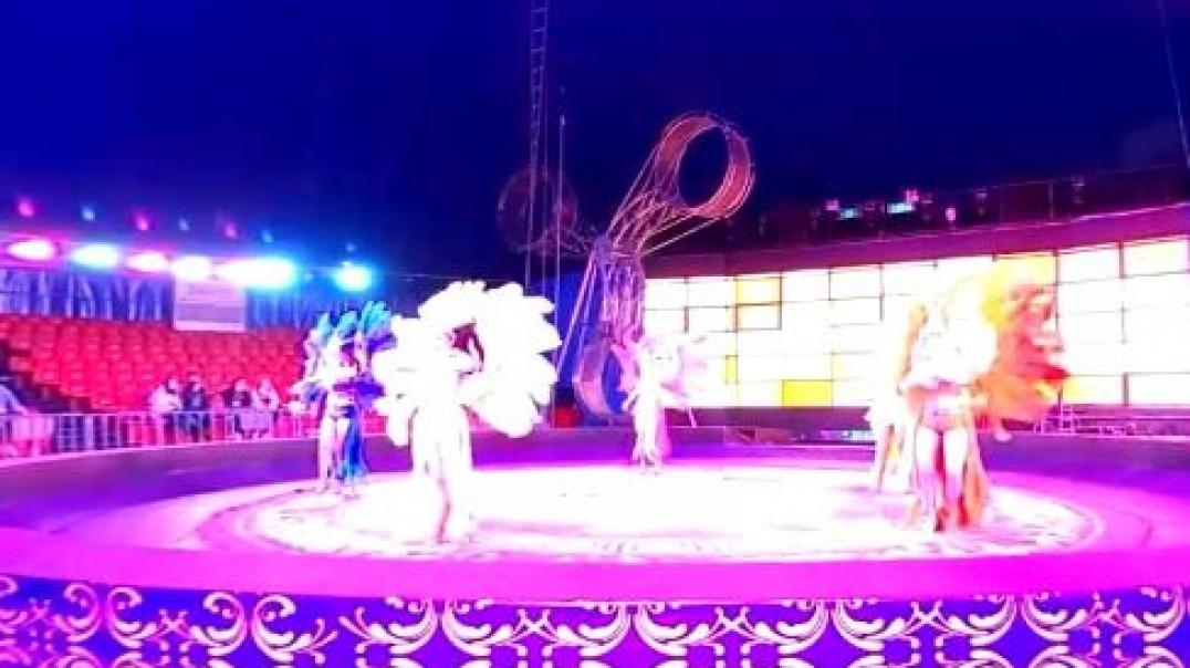 舞蹈表演-武汉东湖大马戏